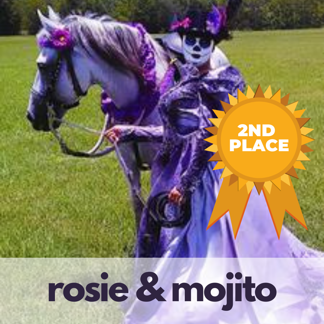 Horse halloween costume contest winner: second place