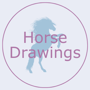 Button that says horse drawings. This links to the horse drawings page.