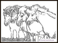 Pony-coloring-page-iceland ponies