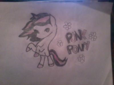 Punk Pony