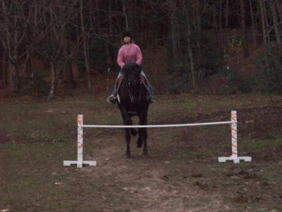 Me jumping my TWH 2.5 ft.