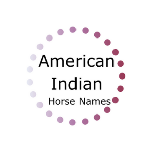 Graphic that says American Indian horse names.