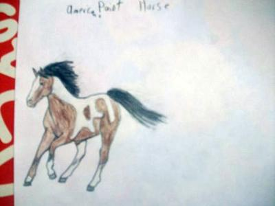 my horse painting..