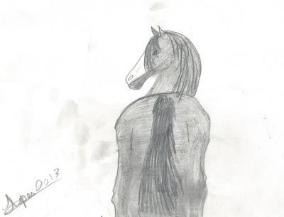 gray green broke mare