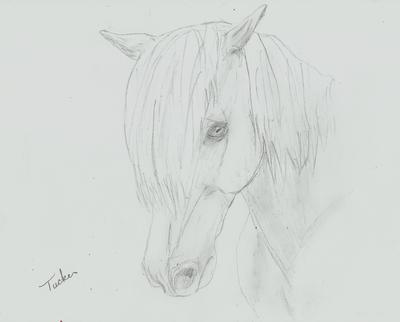 Tucker- 30 y/o albino ♥