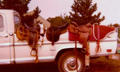 1977 Saddle Collection