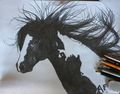 Horse Drawing: Dreams of the WILD west