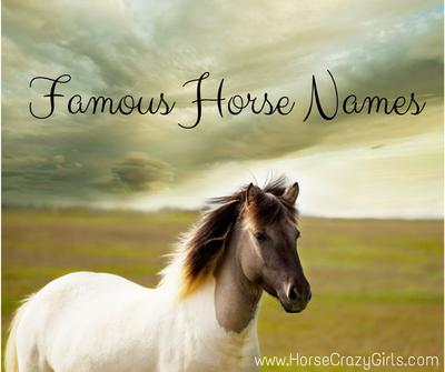Share your favorite famous horse names!