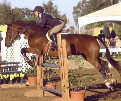 jumping my horse