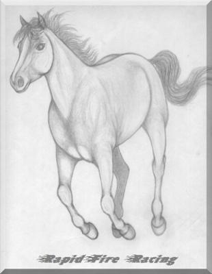 a pencil sketch for my online horse ranch