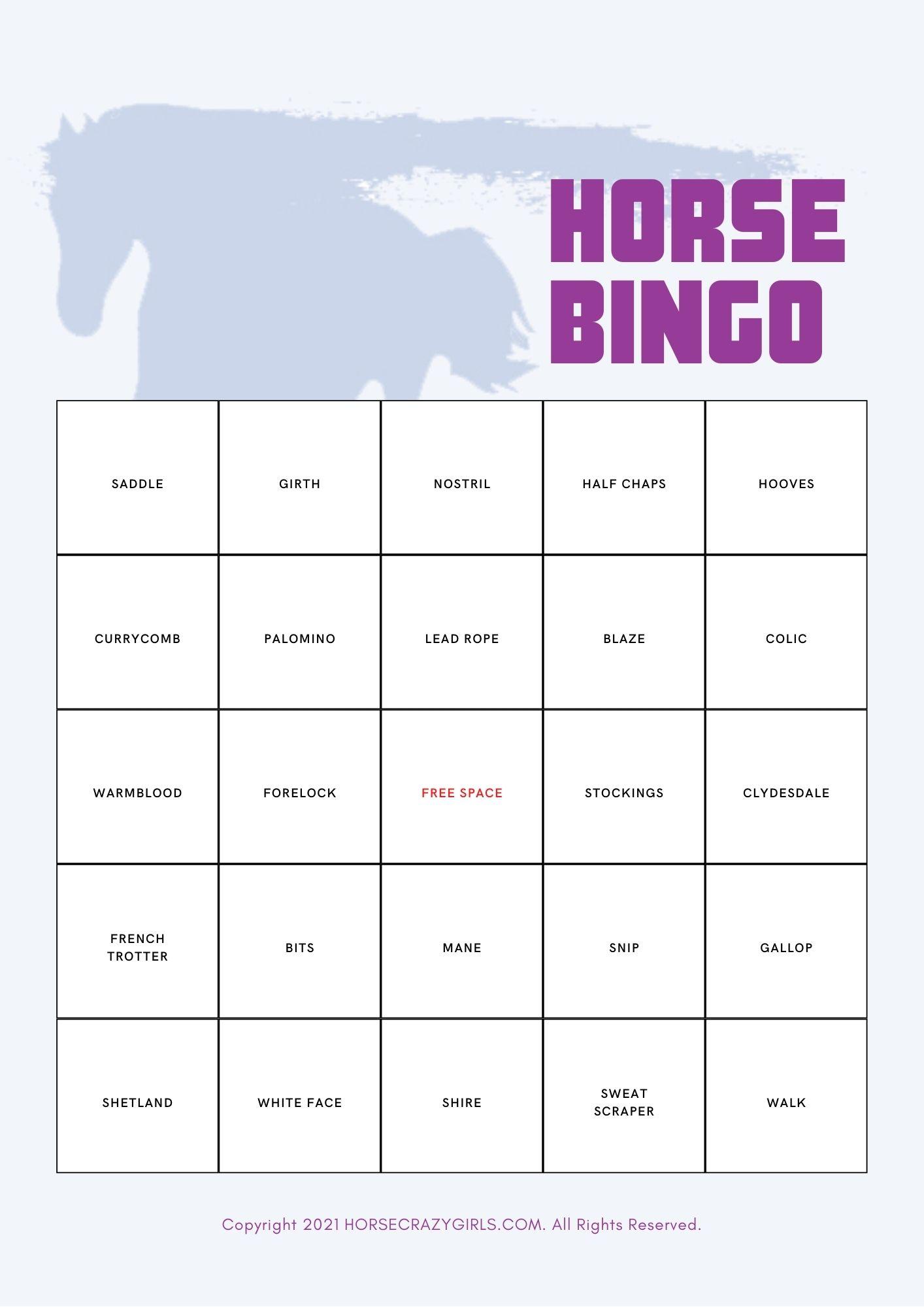 A bingo card with a horse theme.