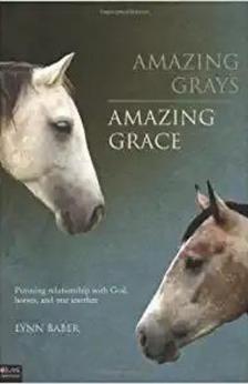 Amazing Grays, Amazing Grace by Lynn Baber