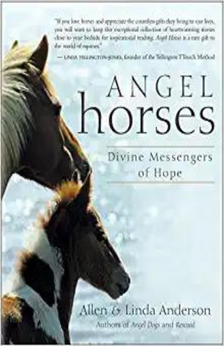 Angel Horses: Divine Messengers of Hope by Allen & Linda Anderson