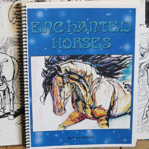 Fantasy Horse Coloring Book for Teens and Young Adults