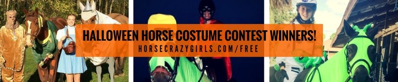 Halloween horse costume contest 2016 winners