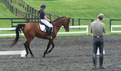 this is me and my horse cobalt at shady stables