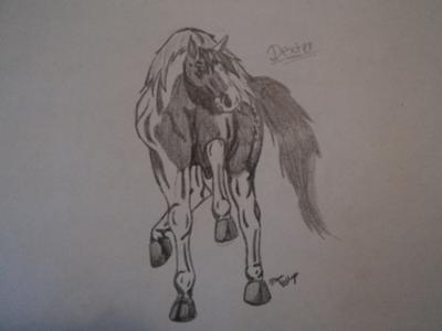 a drawing of my horse, Dexter