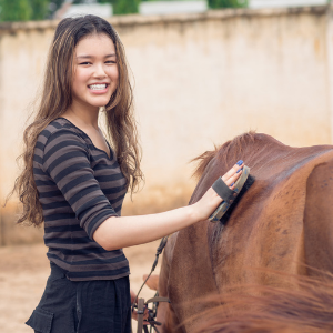 Girl grooming a horse