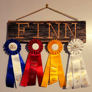 Personalized Horse Sign Ribbon Display gift for equestrians