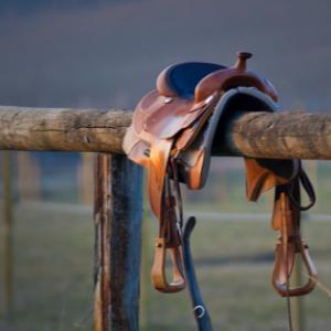 Western saddle on a rail