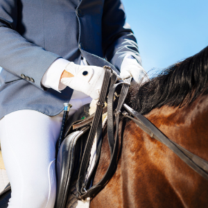 Person riding a horse, the picture is zoomed in on the hands and reins