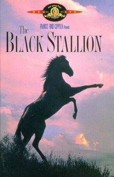 A picture of the movie The Black Stallion.