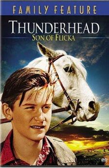 A picture of the movie Thunderhead: Son Of Flicka.
