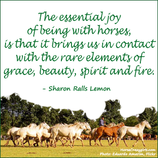 Horse Pictures  Quotes on Horse Quote By Sharon Ralls Lemon