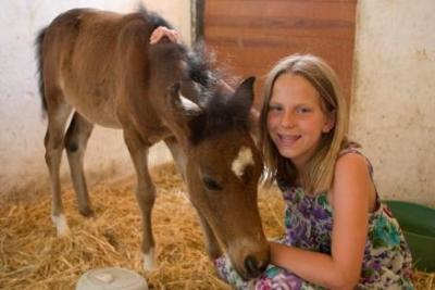 Foal whose mother was killed and the rescue center took in.