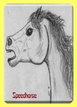 A pencil drawing of a horse head with a fierce expression.