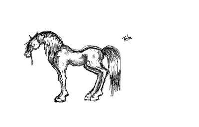my horse art
