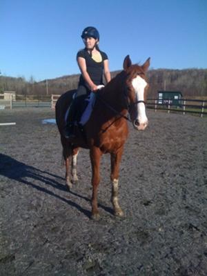 This is my horse Aramis!