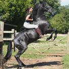this is me and my stallion beauty having fun