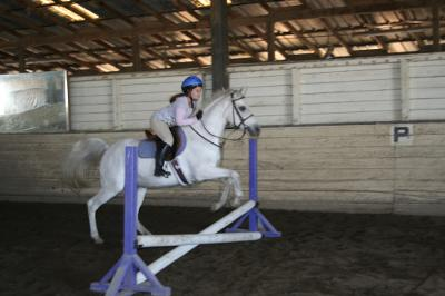 This is me jumping on Sandy. She's a fleabitten grey Arabian.