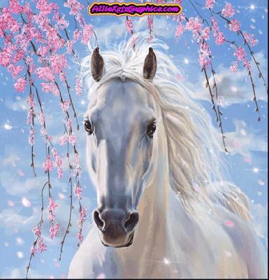 I love ponies!