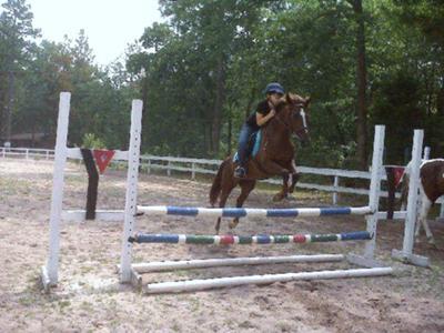 Jumping Daisy