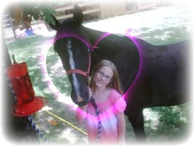 Here is my old horse who got put down last  summer. :c She was a tennesse walking horse. Her name was Lady. I miss her.. :c