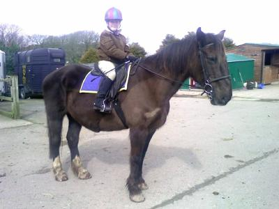 Me on a 16hh horse called Medi.
