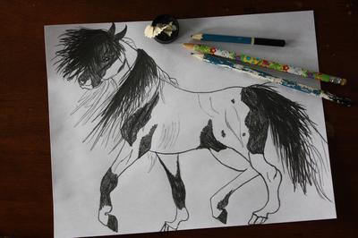 Paint Indian Horse 3/30/16