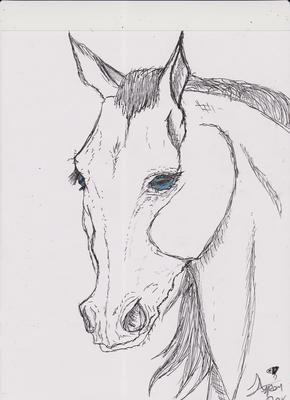 Pen horse drawing