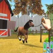 Free horse games