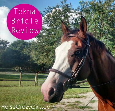 Tekna bridle review