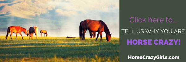 A picture of horses grazing with the text click here to tell us why you are horse crazy.