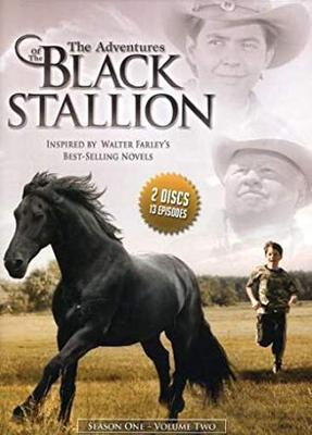 The Adventures of the Black Stallion Season 1
