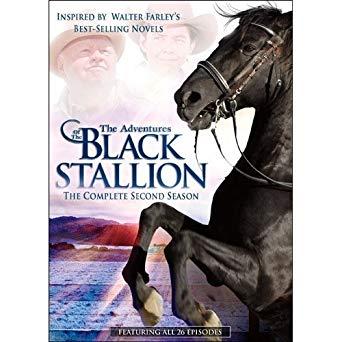 The Adventures of the Black Stallion Season 2