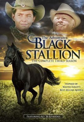 The Adventures of the Black Stallion Season 3