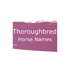 Graphic that says Thoroughbred horse names.