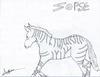 the zorse