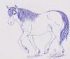 Delta the mare