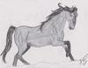 Mustang # 3